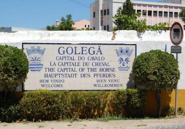 golega1